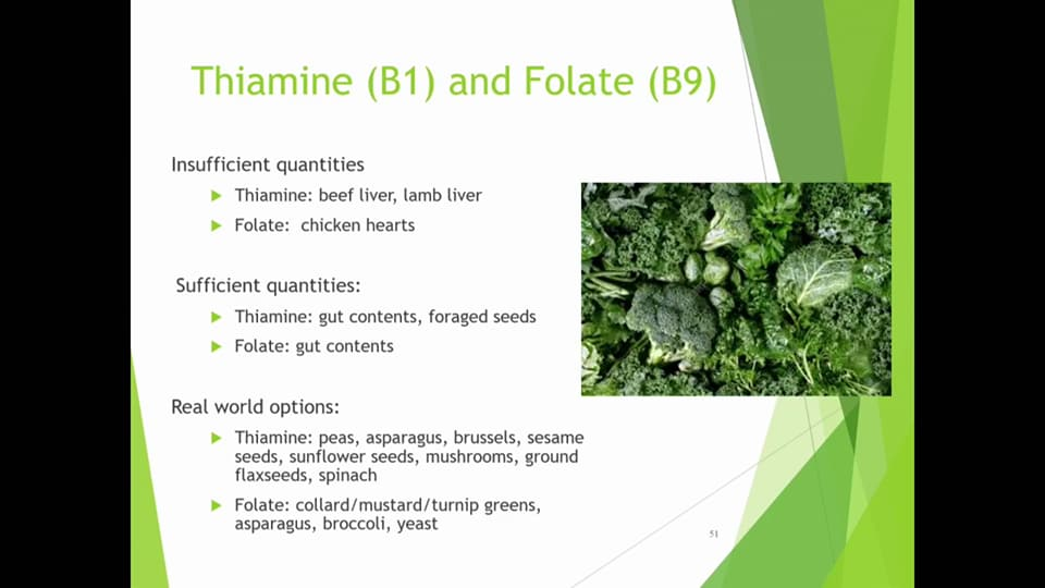 folate and thiamine sources